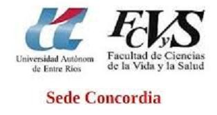 logo fcvys png